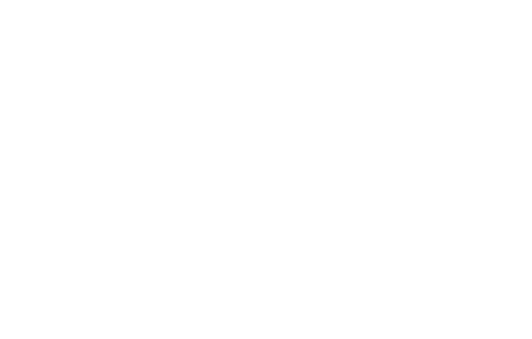The Resilient Brain Project logo